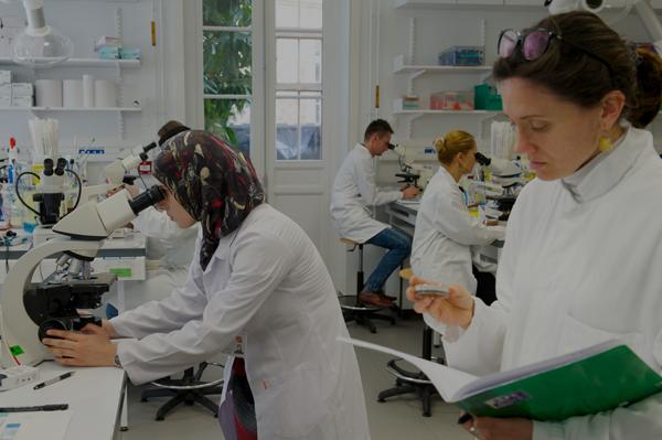 L'enseignement - Institut Pasteur