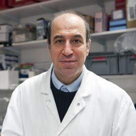 Muhamed-Kheir Taha, Institut Pasteur