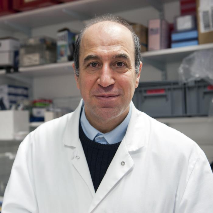 Muhamed-Kheir TAHA - Institut Pasteur