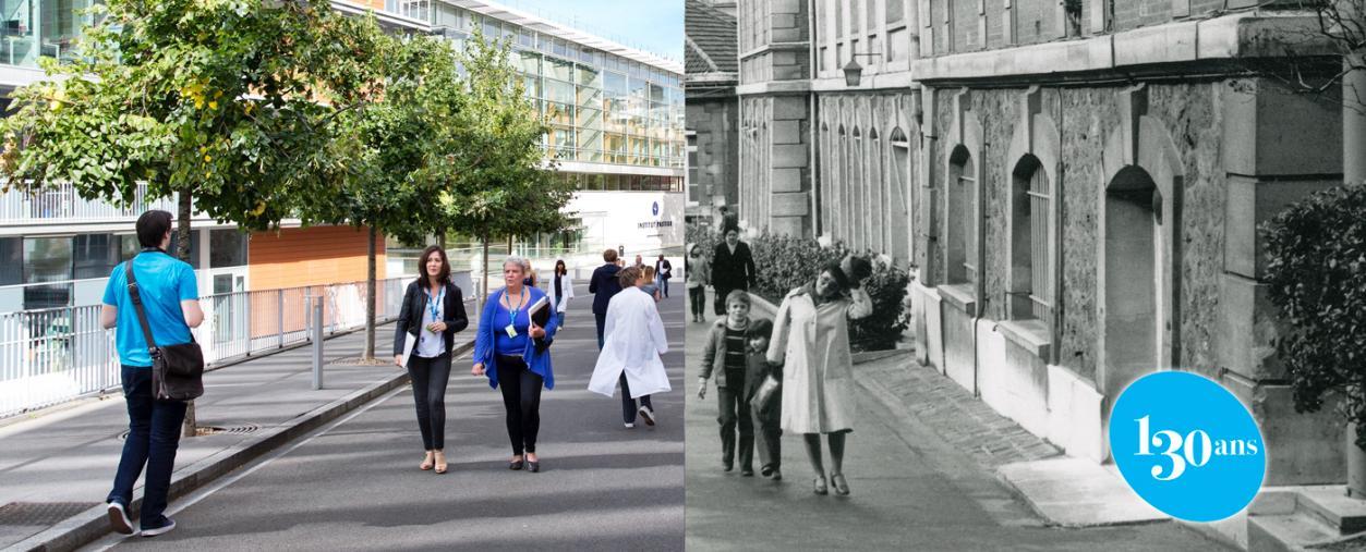 130 ans - Institut Pasteur