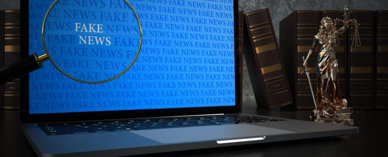 Covid-19 : le tribunal correctionnel de Senlis condamne pour diffamation l'auteur d'une vidéo 'fake news'