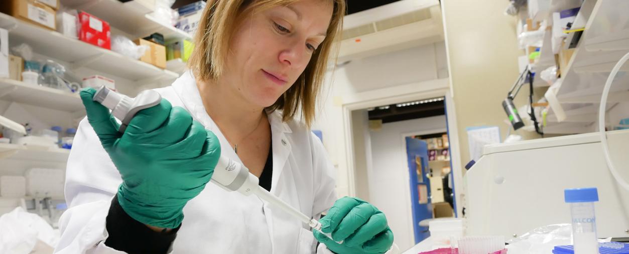 Dans le laboratoire de Gérard Eberl - Institut Pasteur