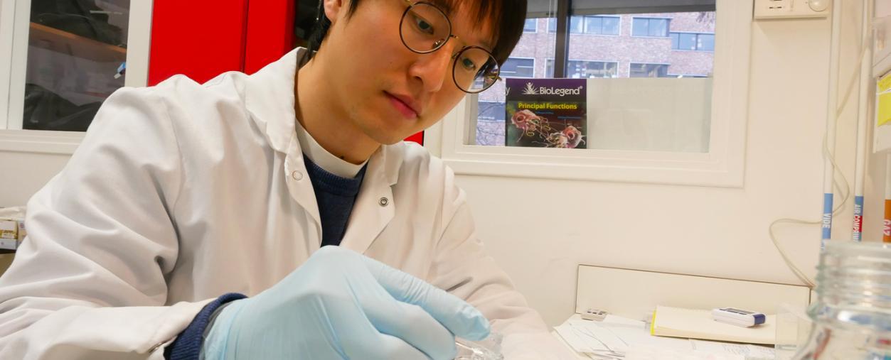 Dans le laboratoire Microenvironnement et immunité