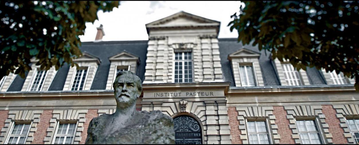 Lancement la procédure de recrutement du prochain directeur de l'Institut Pasteur