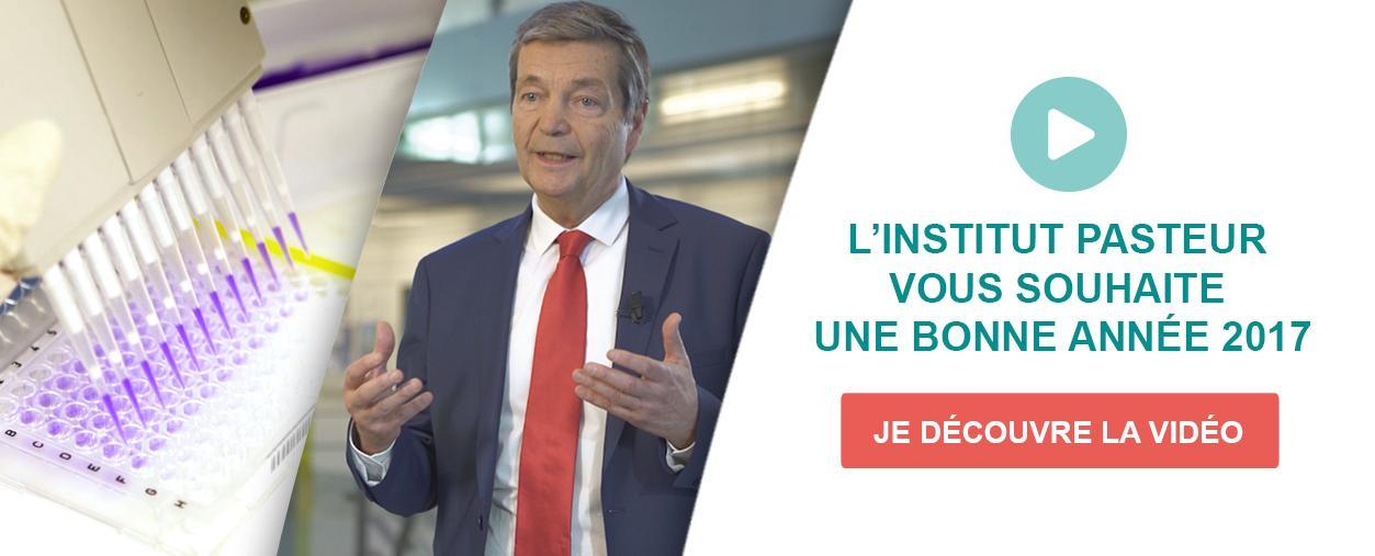 L'INSTITUT PASTEUR VOUS SOUHAITE UNE BONNE ANNÉE 2017