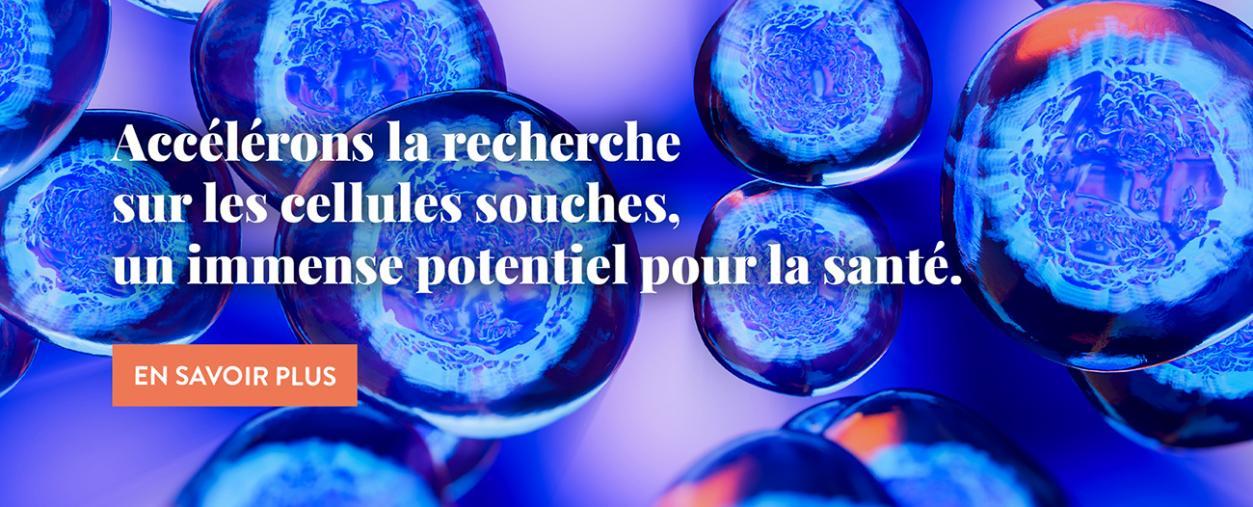 Cellules souches - Institut Pasteur - 2021