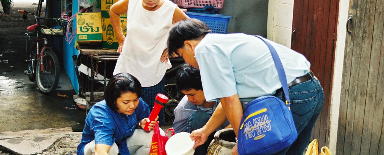 Zika : une circulation silencieuse au long cours en Thaïlande - Institut Pasteur