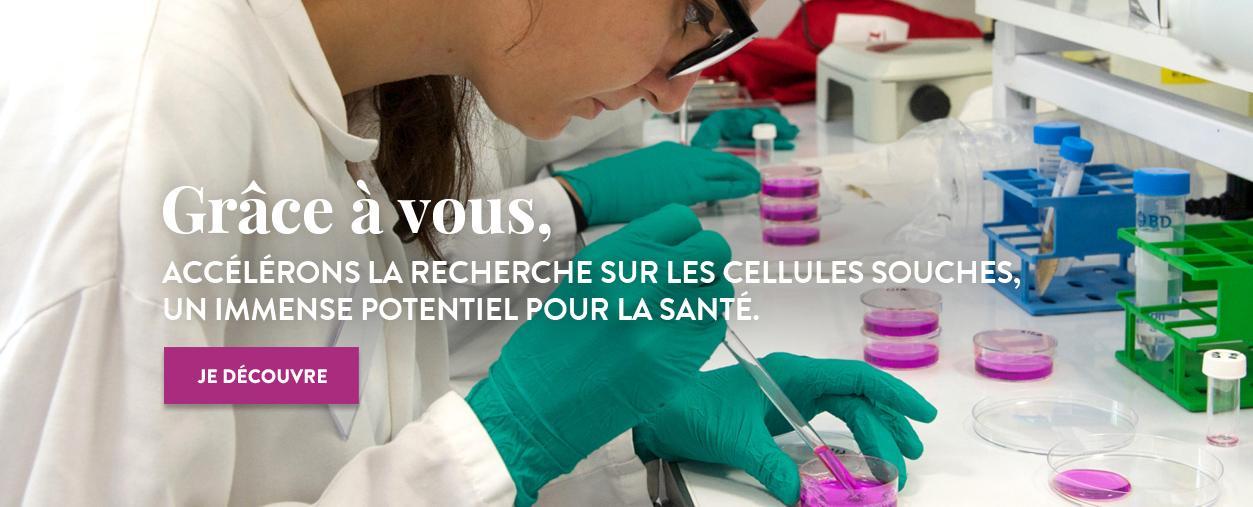 Cellules souches : un espoir pour des milliers de personnes - Institut Pasteur