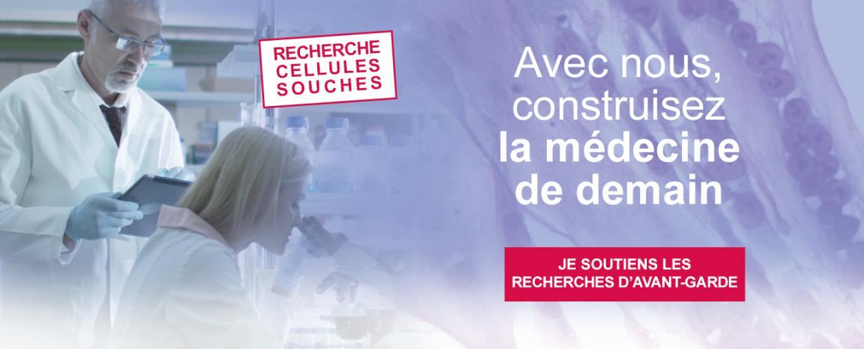 Cellules souches - Institut Pasteur