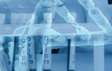 Vaccin ADN - Institut Pasteur