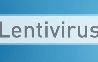 Lentivirus - Institut Pasteur
