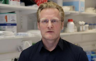 Tête à tête avec Gérard Eberl : microbiote et diversification alimentaire - Institut Pasteur
