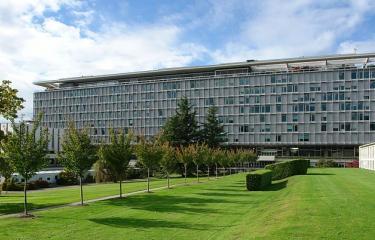 Renouvellement du statut de l'Association Pasteur International Network « en relations officielles » avec l'OMS - Institut Pasteur
