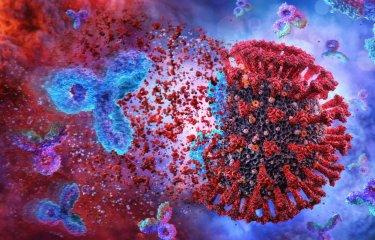 Sars-Cov-2 Immunity