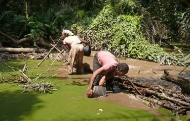 Colloque du Réseau francophone sur les maladies tropicales négligées :  plaidoyer en faveur d'une approche intégrée du diagnostic
