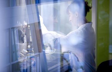 CNR Grippe - Institut Pasteur