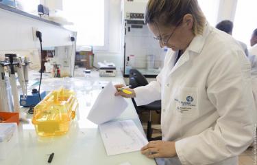 CNR Arbovirus - Institut Pasteur de la Guyane