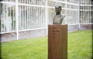 Daniel Iffla Osiris - Institut Pasteur