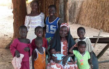 Diminution drastique de l'exposition au paludisme au Sénégal