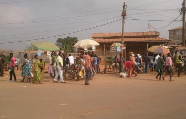 Yaoundé Cameroun - Institut Pasteur