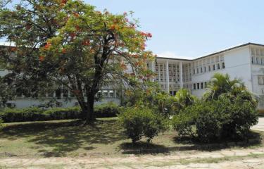 Guyane - Institut Pasteur