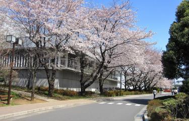 RIKEN Wako - Japon - Institut Pasteur