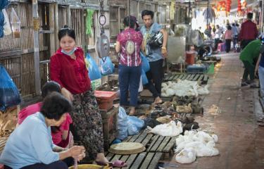 Marché aux volailles d'Orussey - Institut Pasteur du Cambodge