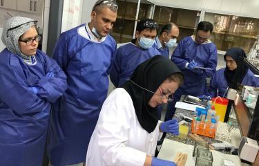 Institut Pasteur Iran - cours Rage 2017 crédit Hervé Bourhy
