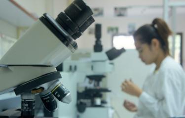 Laboratoire Institut Pasteur du Cambodge