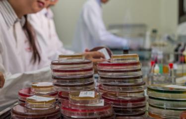 Laboratoire d'analyses médicales de l'Institut Pasteur du Cambodge.