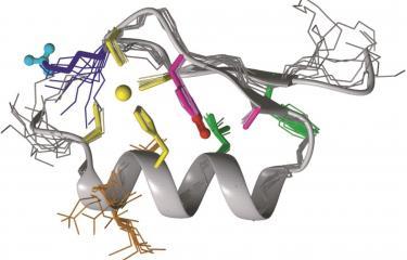 Biologie structurale - Institut Pasteur
