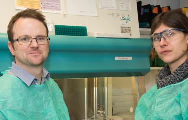 Hépatite C : un nouveau test de diagnostic au chevet du patient - Institut Pasteur